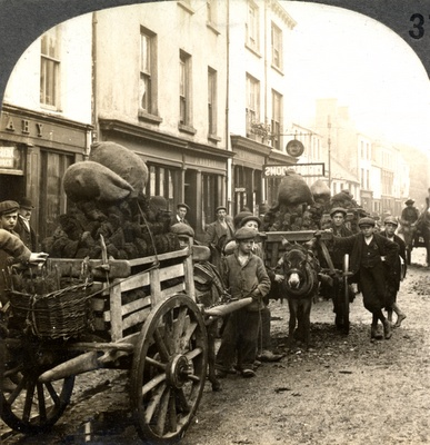 Irish coal for sale, High Street, Killarney, Ireland