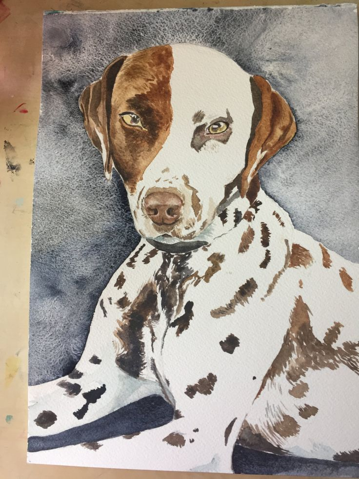 Custom pet portrait - acrylic or watercolour by LittleRowanRedhead on Etsy