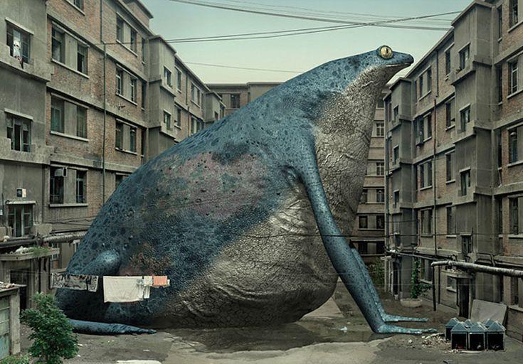 Di Liu: Animal Regulation, Web Design, Regulation Series, Diliu, Blog Design, Frogs, Liu Di, Photo, Di Liu