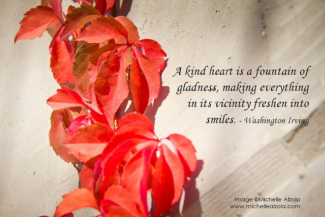 A Kind Heart