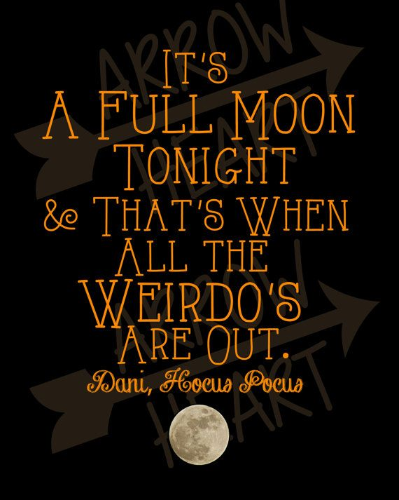 its a full moon tonight thats when all the weirdos are out dani in hocus pocus i would totally use this as part of the hocus pocus halloween - Halloween The Beginning Full Movie