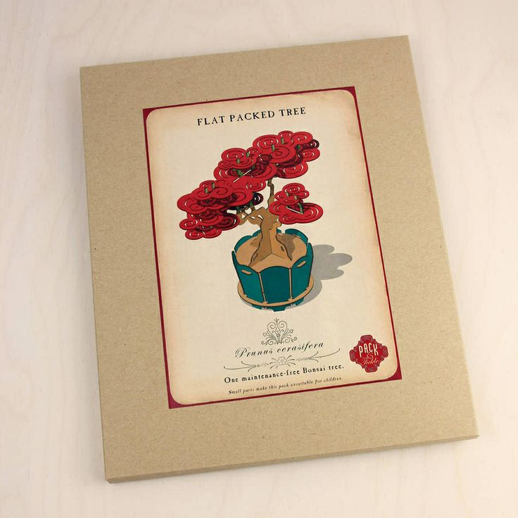 http://www.notonthehighstreet.com/packandtickle/product/flat-packed-cherry-bonsai-tree-kit