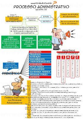 ENTENDEU DIREITO OU QUER QUE DESENHE  ???: PROCESSO ADMINISTRATIVO - LEI 9784/99