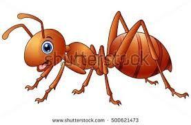 """Képtalálat a következőre: """"ant illustration"""""""