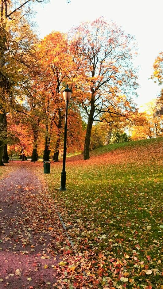 Slottsparken i Oslo, Oslo