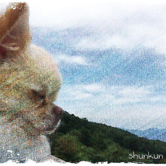 #チワワ#チワワ部 #ロングコートチワワ #愛犬#画像編集 #絵 #山#空 #景色  画像加工アプリで、絵にしてみました(*^^*)