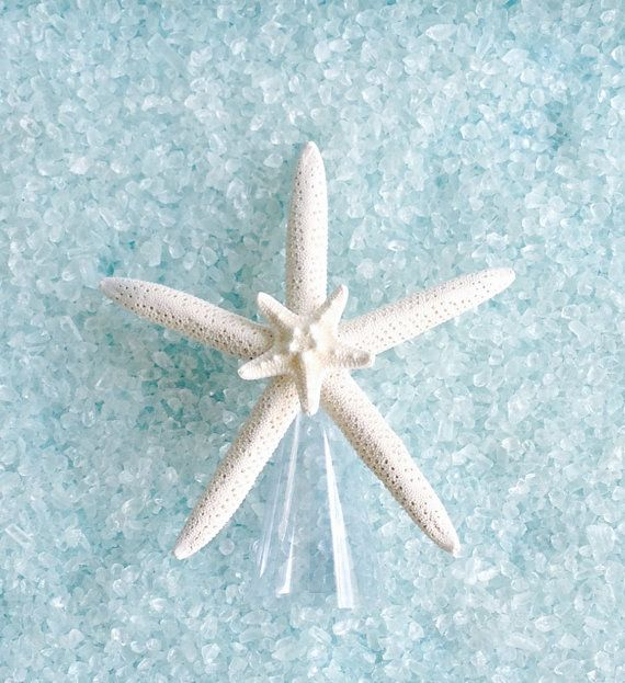 Natural Starfish Tree Topper Choose Natural by SeashellCollection