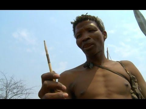 Killing With Poisoned Arrows - Human Planet - BBC - YouTube