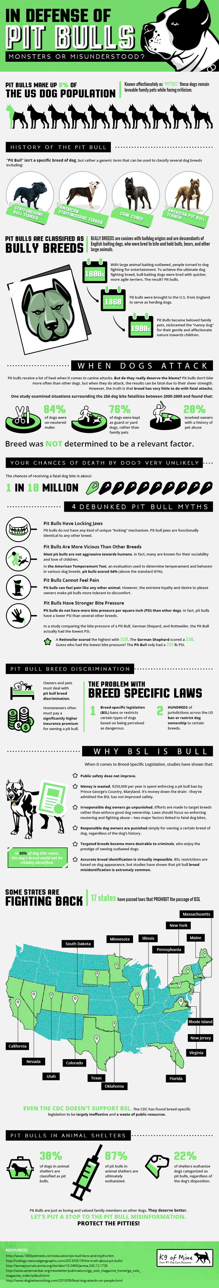 Are Pitbulls dangerous? Do they really have locking jaws? And is it true that they don't feel any pain? Get the facts and much more from this enlightening infographic.