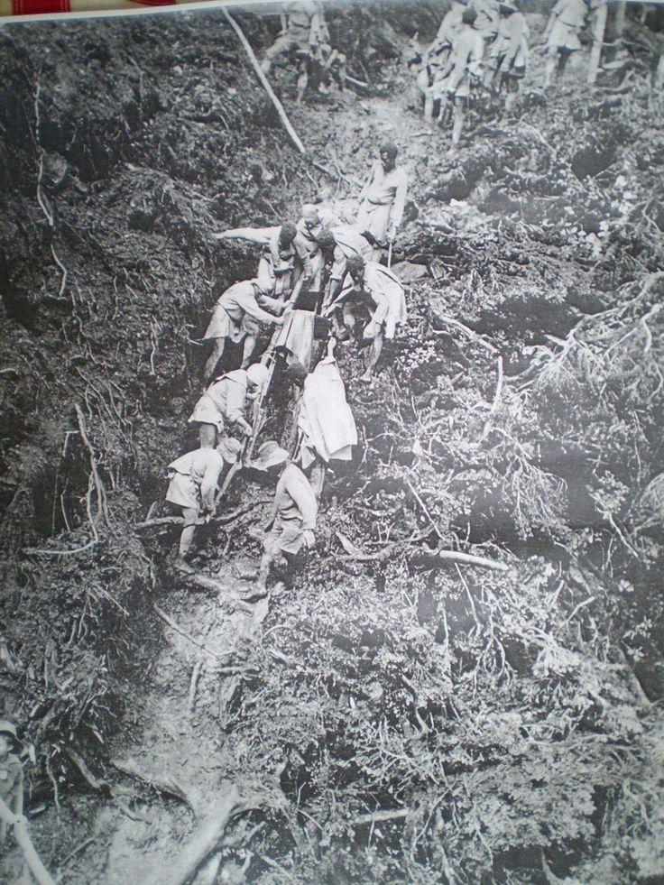 Kokoda trail between Denkj & myola