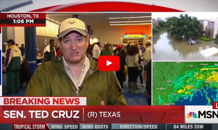 Katy Tur Just Called Out Ted Cruz On Live TV For Voting Against Hurricane Funding Prior To Harvey