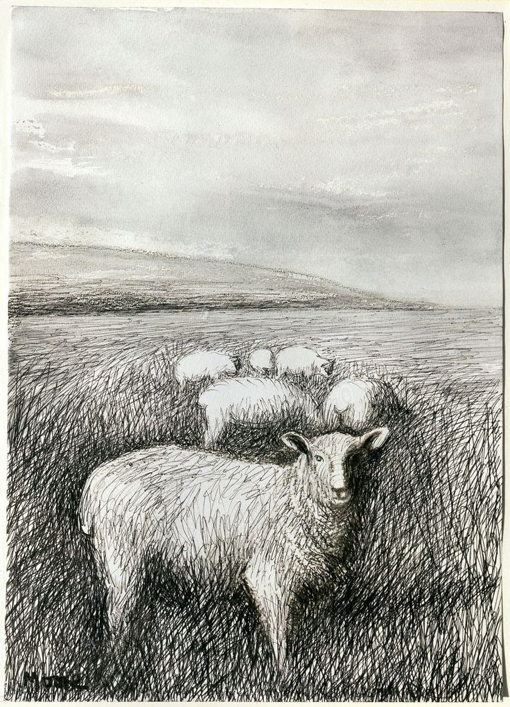 Henry Moore (British, 1898-1986), Sheep Grazing in Long Grass I, 1981. Ballpoint pen, charcoal, wax crayon, chinagraph, watercolour wash, 355 x 254 mm.