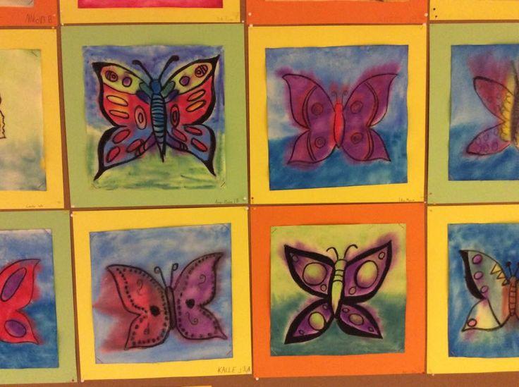 """""""Pirteät perhoset"""" (3.lk). Maalaushuovalle tehty. Sitä myydään rullassa koko 38 cmx25 m, 120g. Maksaa noin 30€/rll ja siitä riittää pitkäksi aikaa ellei tee isoja töitä. Voi tilata Mannerilta. Perhonen piirrettiin mustalla vahaliidulla. Osa käytti sabloonaa, osa piirsi itse näppituntumalla. Sitten huopa kasteltiin ja väritettiin akvarelliliiduilla. Väri levisi sen mukaan kuinka kosteaksi jätti huovan. Toimii myös kuivaliiduilla. (Alakoulun aarreaitta FB -sivustosta / Tiina Viitasalo)"""