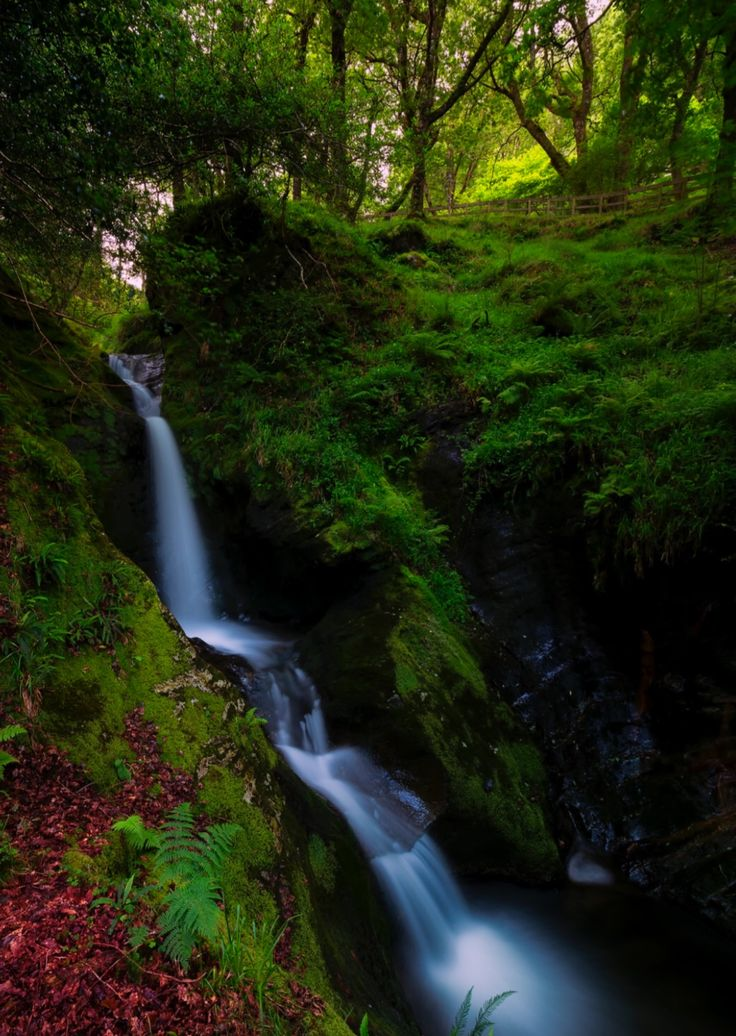 Poulanass Waterfall, Glendalough. Photo by Fearghal. Source Flickr.com