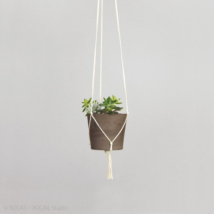 Modern and minimalist macrame plant hanger | DIY hanging planters | Off white pot holder | Indoor garden | Wall planter for herbs, succulent by RocailStudio on Etsy