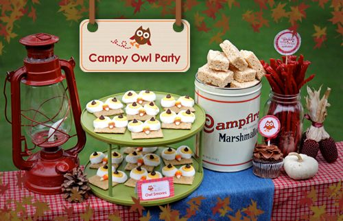 Campy-owl partyBirthday Parties, Owls Parties, Owls Theme, Parties Ideas, Camps Parties, Parties Theme, Camps Theme, Owl Parties, Birthday Ideas