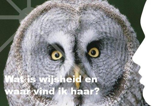 Mijn inspiratie: Wat is wijsheid en waar vind ik haar?