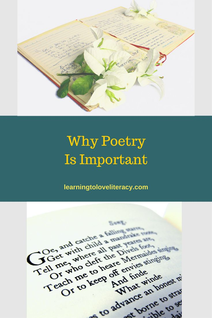 Why Poetry Is Important