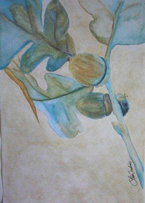 'Acorn - nature series' by Laila Iredias.