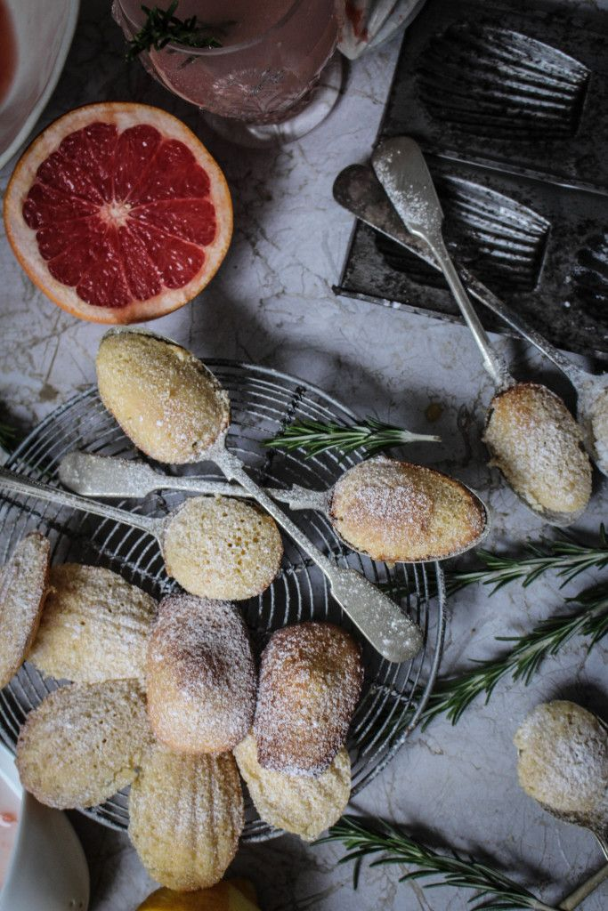 Pink Grapefruit and Rosemary Madeleines   A Guest Post from Twigg Studios