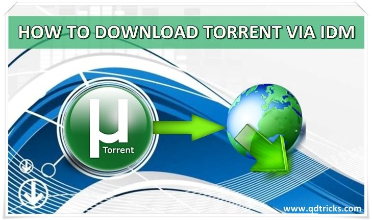 How To Download Torrent File Via IDM | Collections House