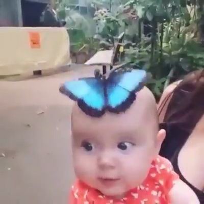 Little Cute Girl With Beautiful Butterfly 🦋   – Kunst