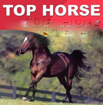 TOP HORSE thoroughbred horse race handicapping software with Database option