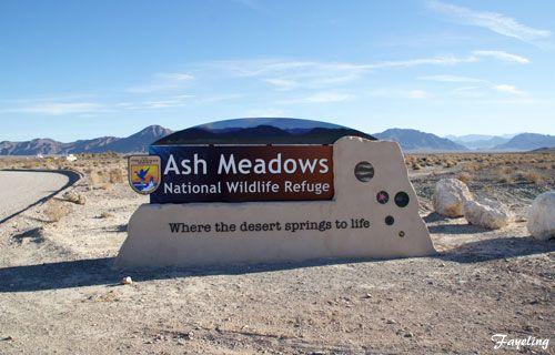 ash meadows national wildlife refuge | Ash Meadows National Wildlife Refuge [ デスバレー国立公園]