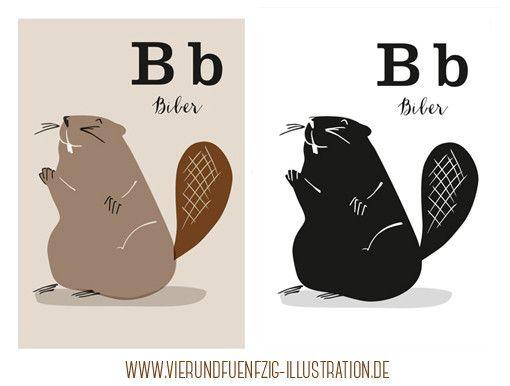 Tier Alphabet: B wie Biber