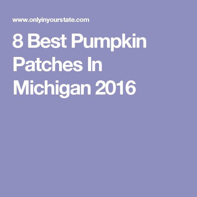 8 Best Pumpkin Patches In Michigan 2016