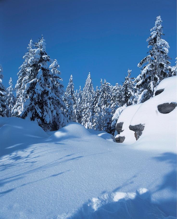 INNs HOLZ / Skigebiet Hochficht