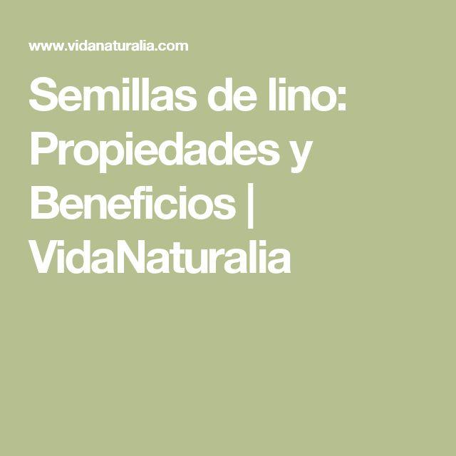 Semillas de lino: Propiedades y Beneficios | VidaNaturalia