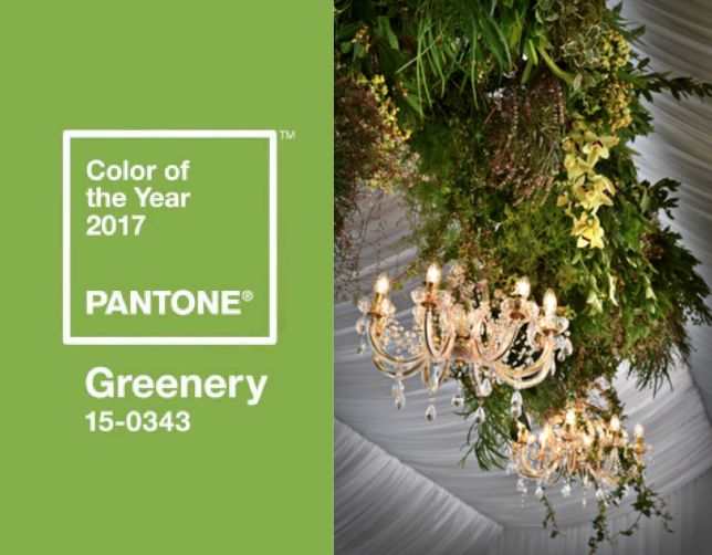 #Greenery  We are yet to meet a bride who doesn't love our signature hanging gardens. This beauty comes from the talented hands of Stem Design, paired with our vintage wooden ladder juxtaposed with glamourous chandeliers.  These statement pieces are eye-catching and glamourous and can be customised to suit a variety of weddings and events.  Perfection!
