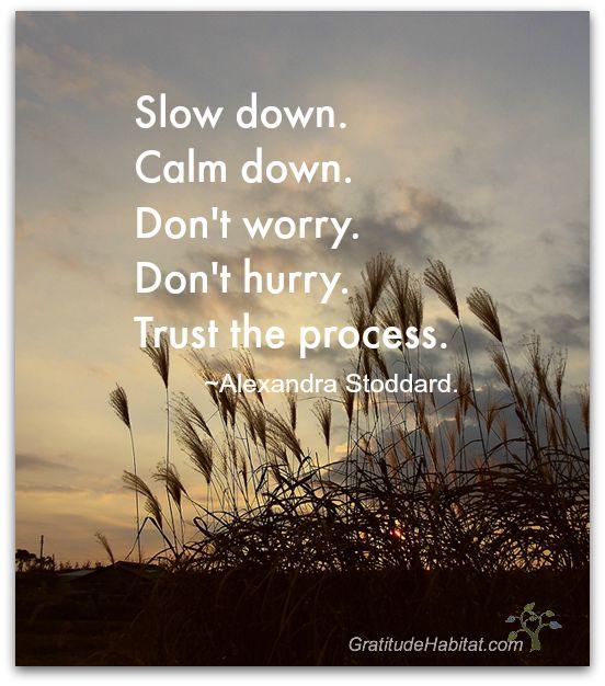 Slow down …trust the process. <3 Visit us at:  www.GratitudeHabitat.com #slow-down #inspirational-quote