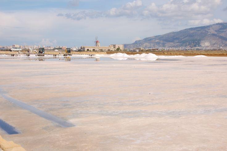 Trapani: Saline (salt flats)