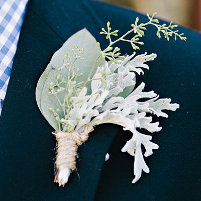 For a winter #wedding: a frosty-looking #boutonniere with silvery shades of seeded eucalyptus to accent the white, felt-like foliage of Senecio cineraria 'Dusty Miller.'