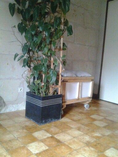 Un tuteur pour (grosse)plante grimpante qui sert de petite séparation de pièce