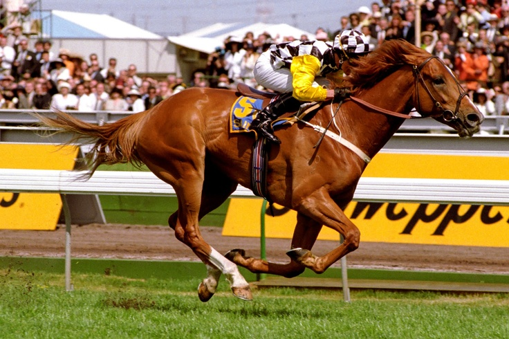 SAINTLY (Aus) Ch g 1992, Sky Chase - All Grace,wins the 1996 VRC Melbourne Cup. Photo: Bronwen Healy Photography.