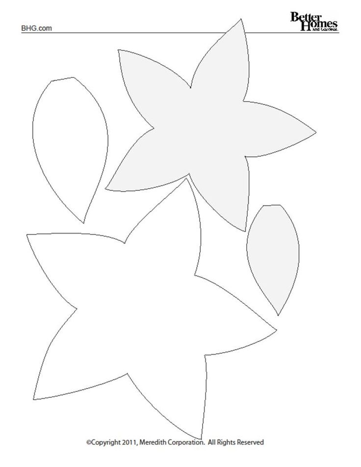 poinsettia templates