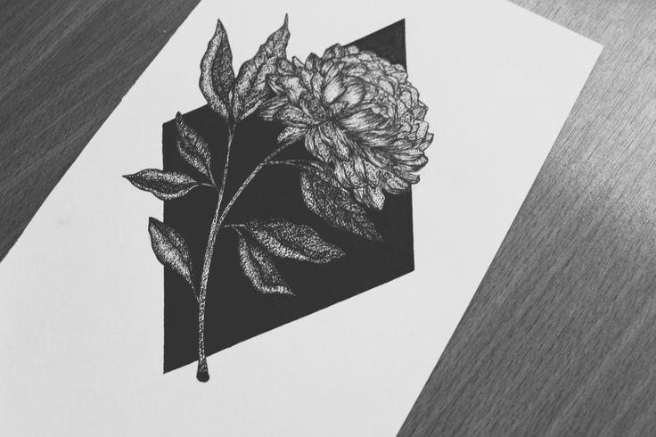 PeonyFind me here:behance | facebook | instagram | tumblr