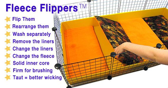 25 best images about rattie fun on pinterest fun diy for How to clean guinea pig cages