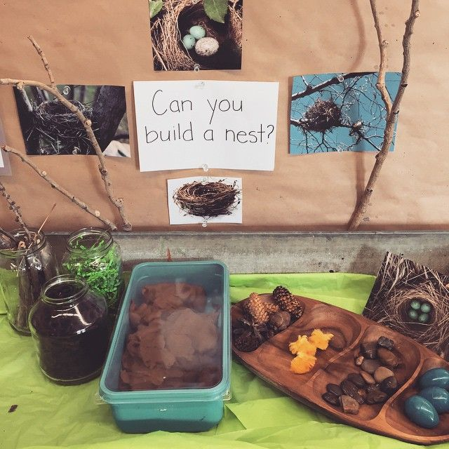 A nest building #learninginvitation with cinnamon playdough, natural materials, yarn, and little eggs and chicks to extend our bird inquiry.