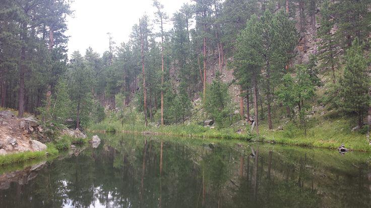 Balade à Custer State Park #OuestAmericain #CusterStatePark #SouthDakota