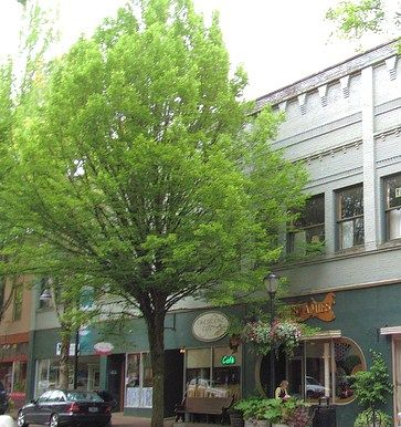 Downtown McMinnville, OR