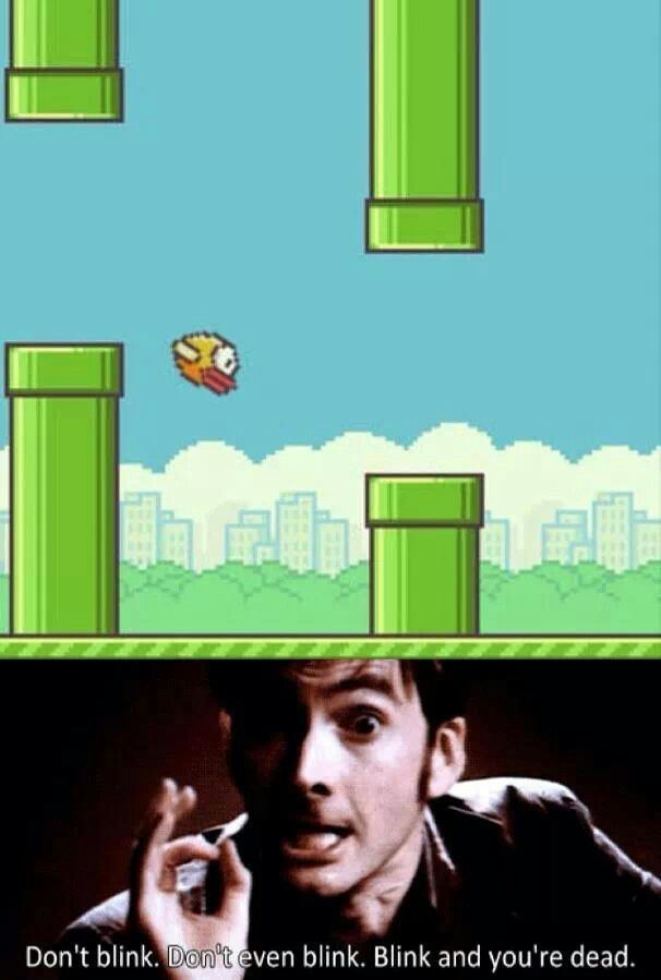 Doctor Who and flappy bird = truth.