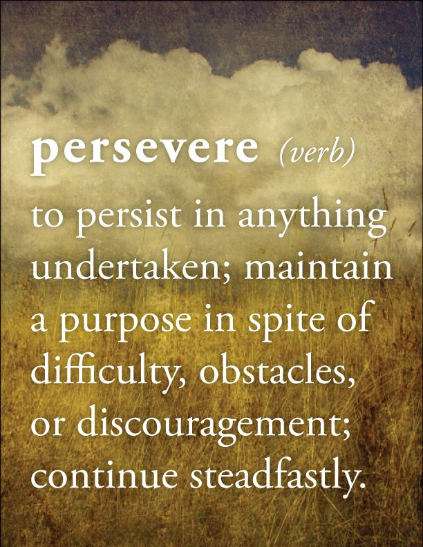 PERSEVERE (verb) = To persist in anything undertaken; maintain a purpose in spite of difficulty, obstacles or discouragement; continue steadfastly.....OMG...<3 this!