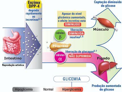Causas De La Diabetes | Avena para adelgazar, Diabetes y