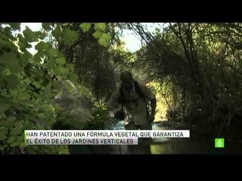 Paisajismo urbano en la sexta noticias http www for Paisajismo urbano