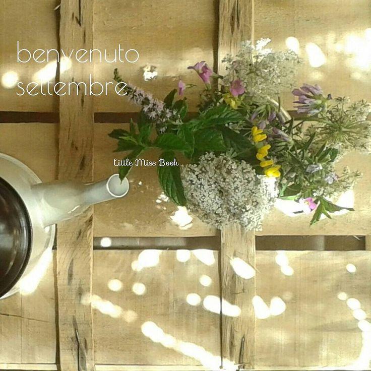 Settembre è la luce morbida di fine estate, il bagliore di nuove partenze. Flutto in attesa di cambiamenti. Caro settembre, ti affido i miei sogni e il mio blog che oggi riapre dopo la lunga pausa estiva. #helloseptember #benvenutosettembre #settembre #september #morninglight #morning #fioridicampo #wildflowers #carrotflower #teapot #sun #littlemissbookblog #missbookinvacanza #bookblogger #instagram #dreaming #whimsical