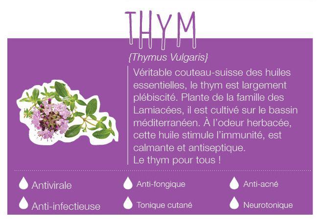 Plante de la famille des Lamiacées, il est cultivé en France et aux alentours du bassin méditerranéen. Son odeur est herbacée, aromatique et typique. Elle stimule l'immunité, est anti-viral, calmante, anti-infectieuse et est un antiseptique aérien.